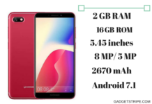 Gionee F205 Specs