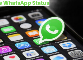 how to download pictures from whatsapp status